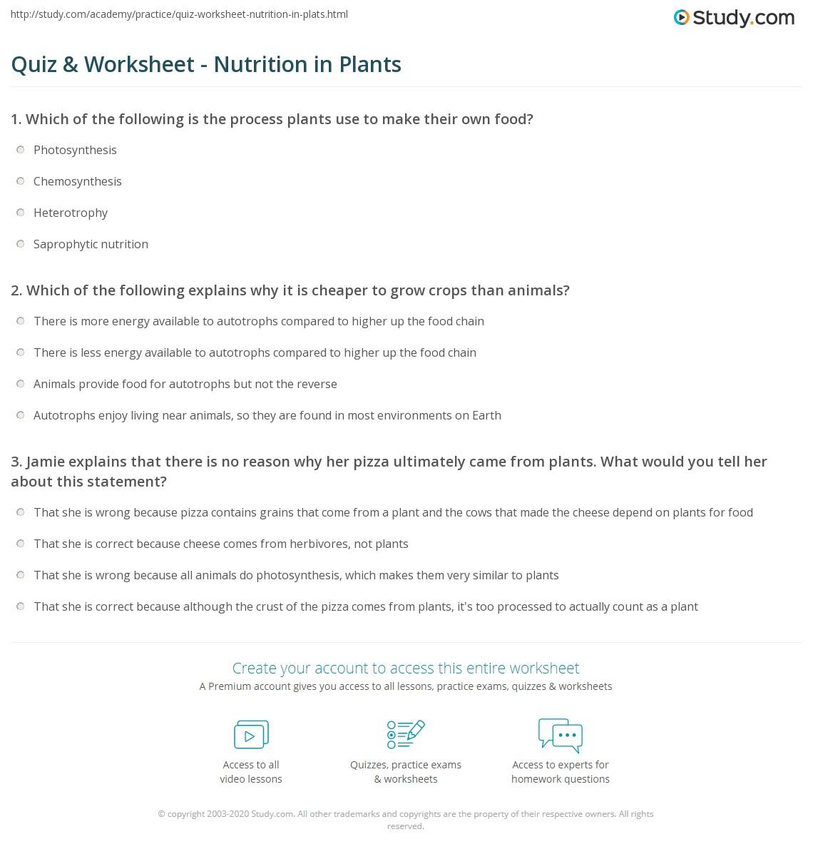 Quiz Worksheet Nutrition in Plants – Nutrition Worksheets for High School