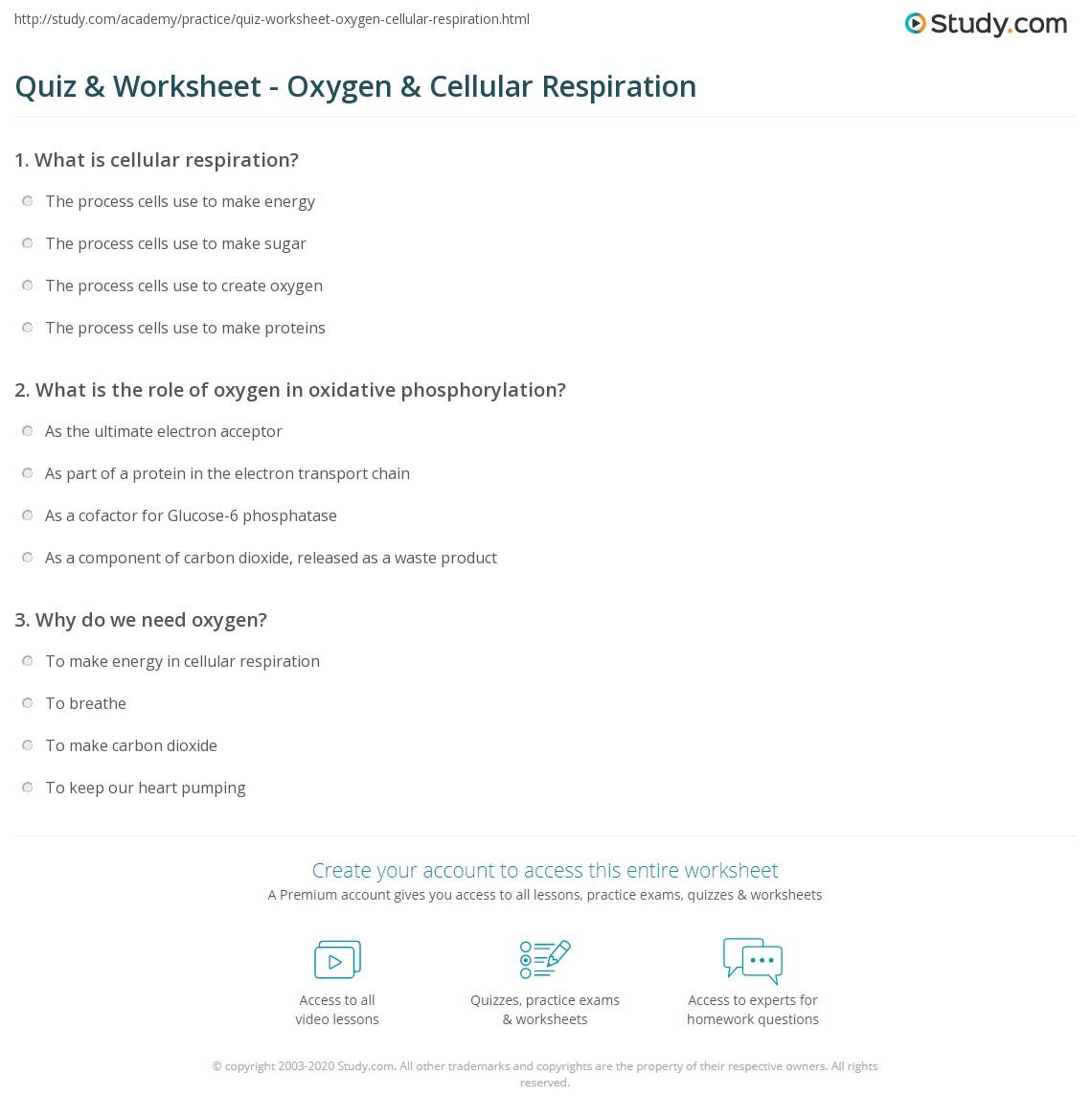 worksheet Cell Respiration Worksheet quiz worksheet oxygen cellular respiration study com print role of in worksheet