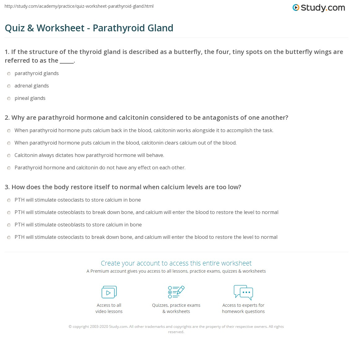 Quiz & Worksheet - Parathyroid Gland | Study.com