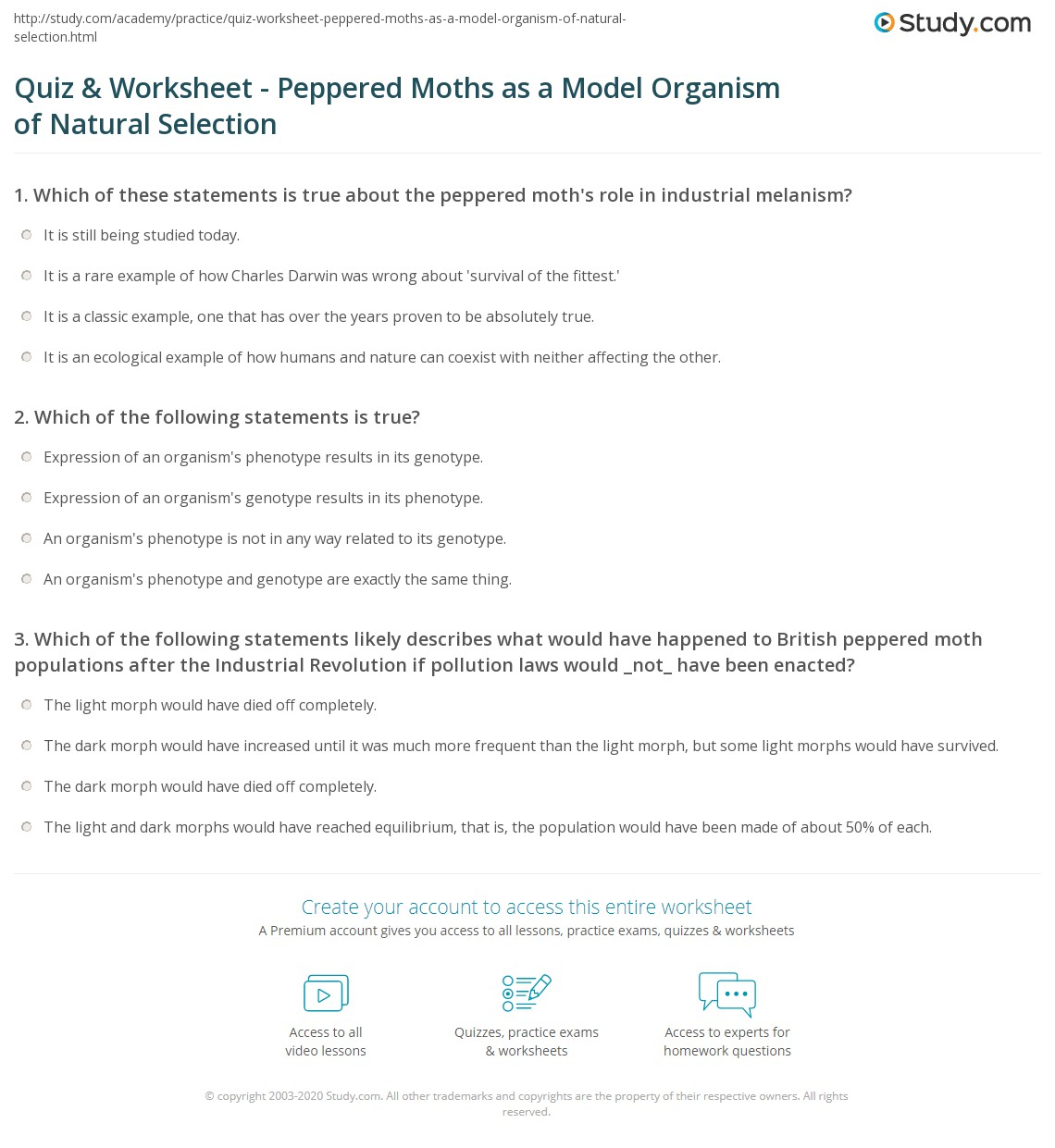Quiz Worksheet Peppered Moths As A Model Organism Of