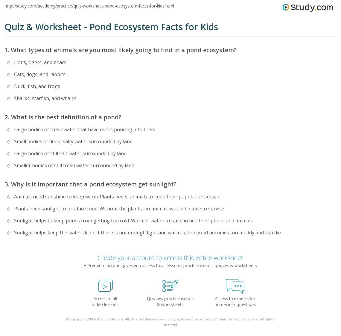 Quiz & Worksheet - Pond Ecosystem Facts for Kids | Study com