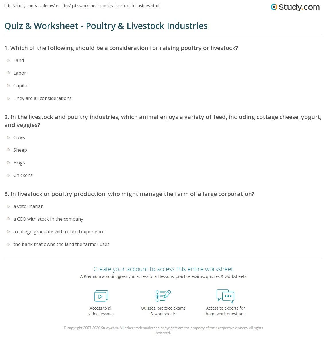 quiz worksheet poultry livestock industries. Black Bedroom Furniture Sets. Home Design Ideas