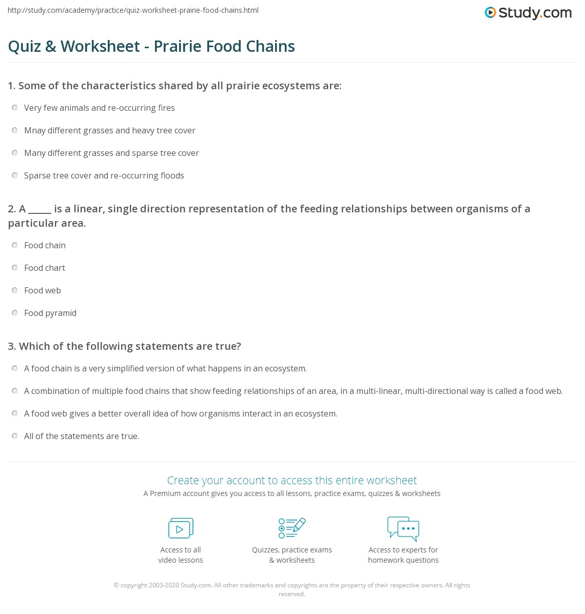 worksheet Food Chains Worksheet quiz worksheet prairie food chains study com print webs worksheet