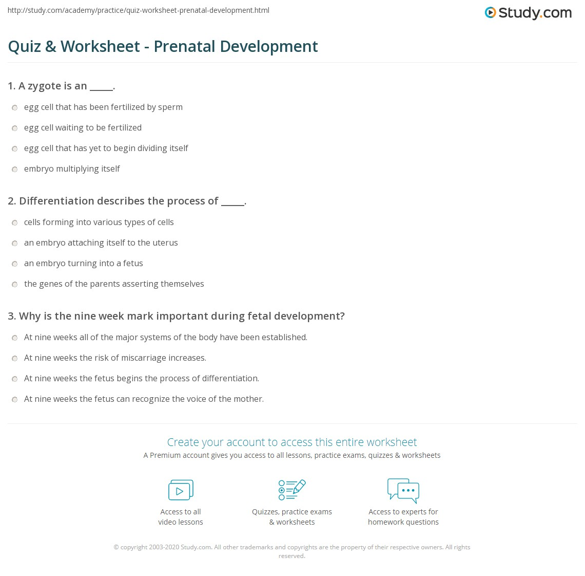 quiz worksheet prenatal development. Black Bedroom Furniture Sets. Home Design Ideas