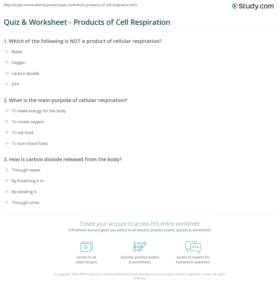 Worksheets Cell Respiration Worksheet quiz worksheet products of cell respiration study com print what are the worksheet