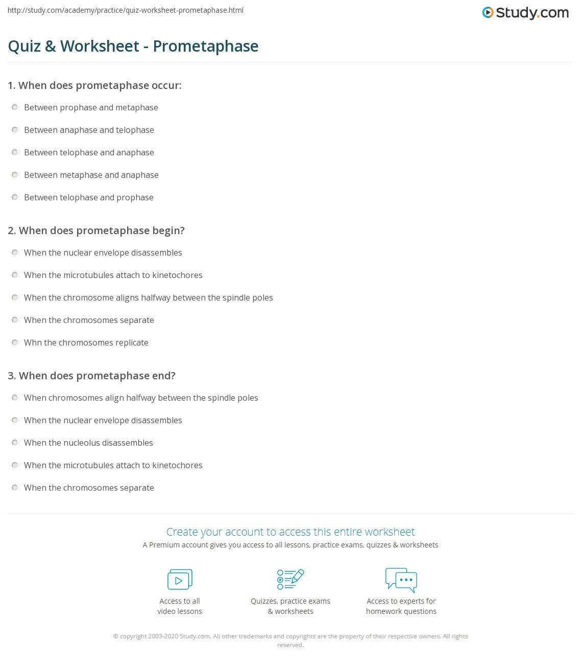 quiz worksheet prometaphase study com