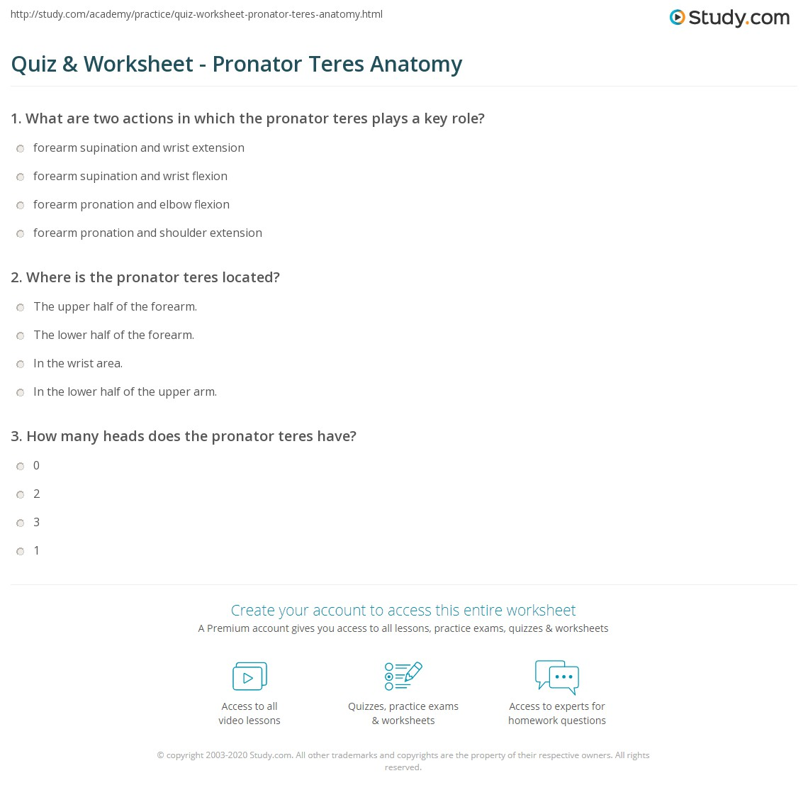Quiz & Worksheet - Pronator Teres Anatomy   Study.com