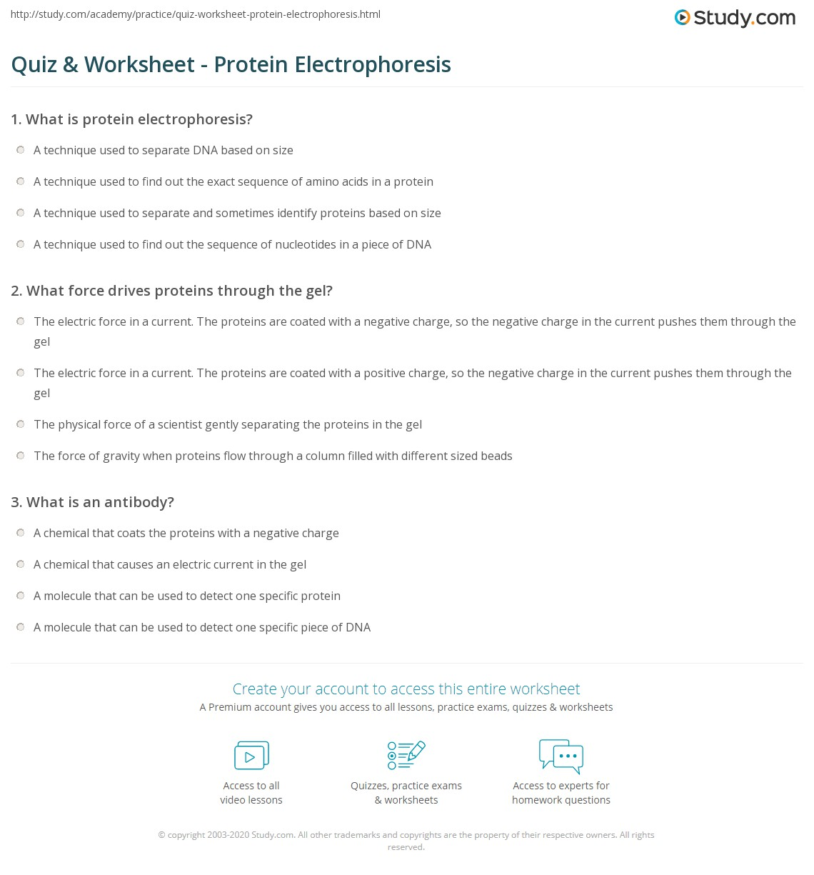 Uncategorized Gel Electrophoresis Worksheet quiz worksheet protein electrophoresis study com print what is worksheet