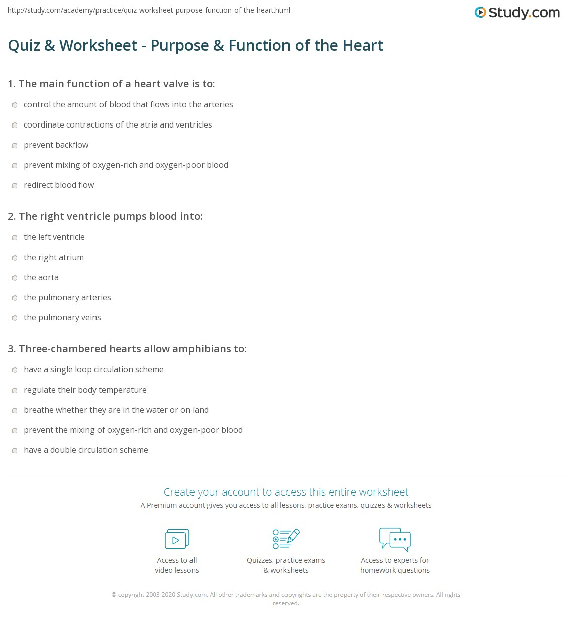 Quiz Worksheet Purpose Function Of The Heart Study