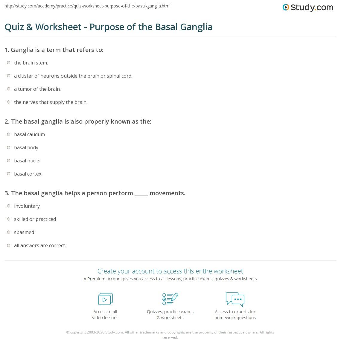 Quiz & Worksheet - Purpose of the Basal Ganglia | Study.com