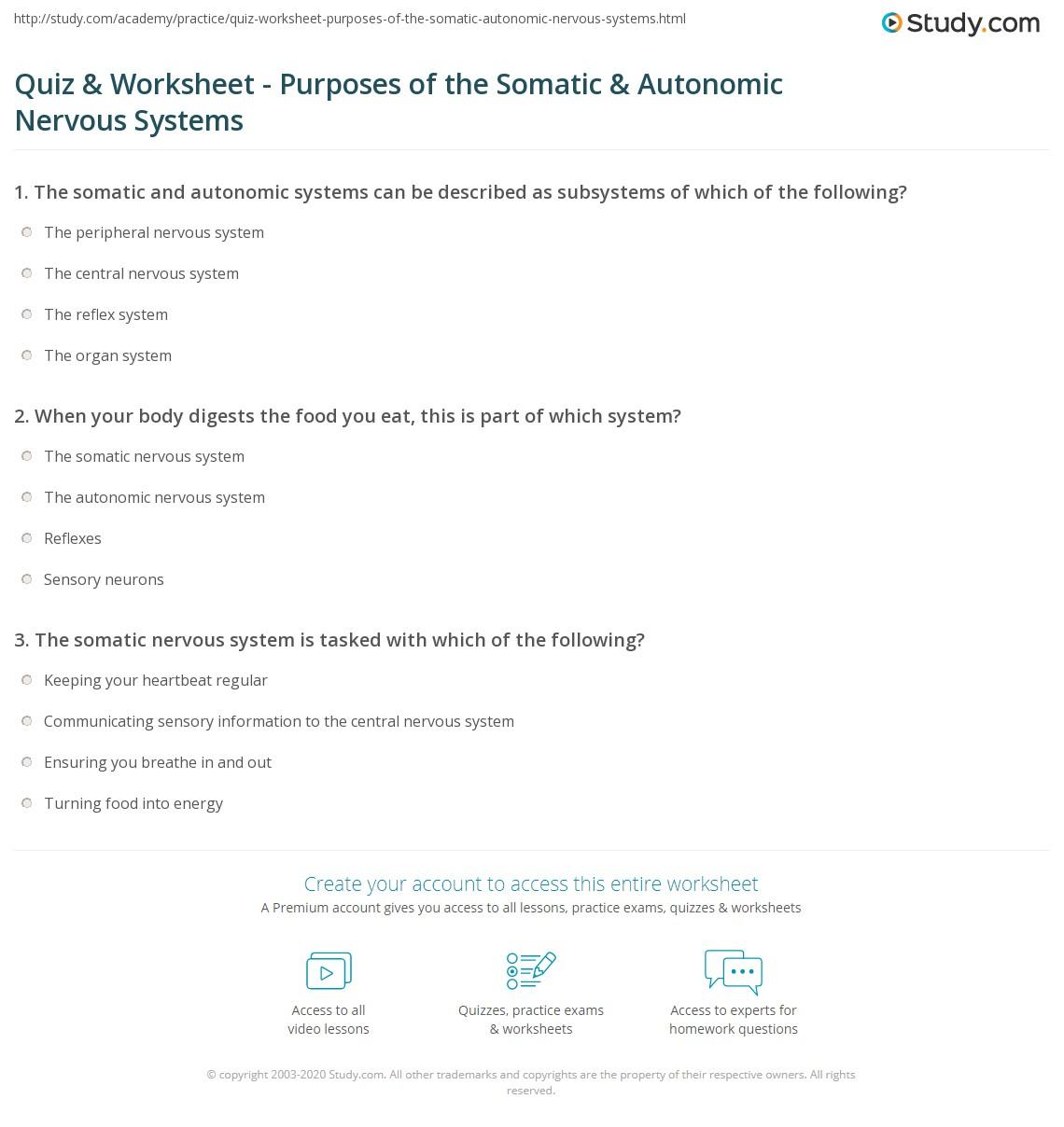 Quiz Worksheet Purposes Of The Somatic Autonomic Nervous