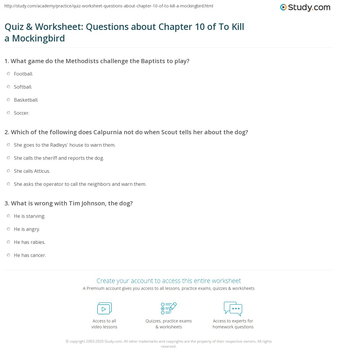 Print To Kill A Mockingbird Chapter 10 Summary Worksheet