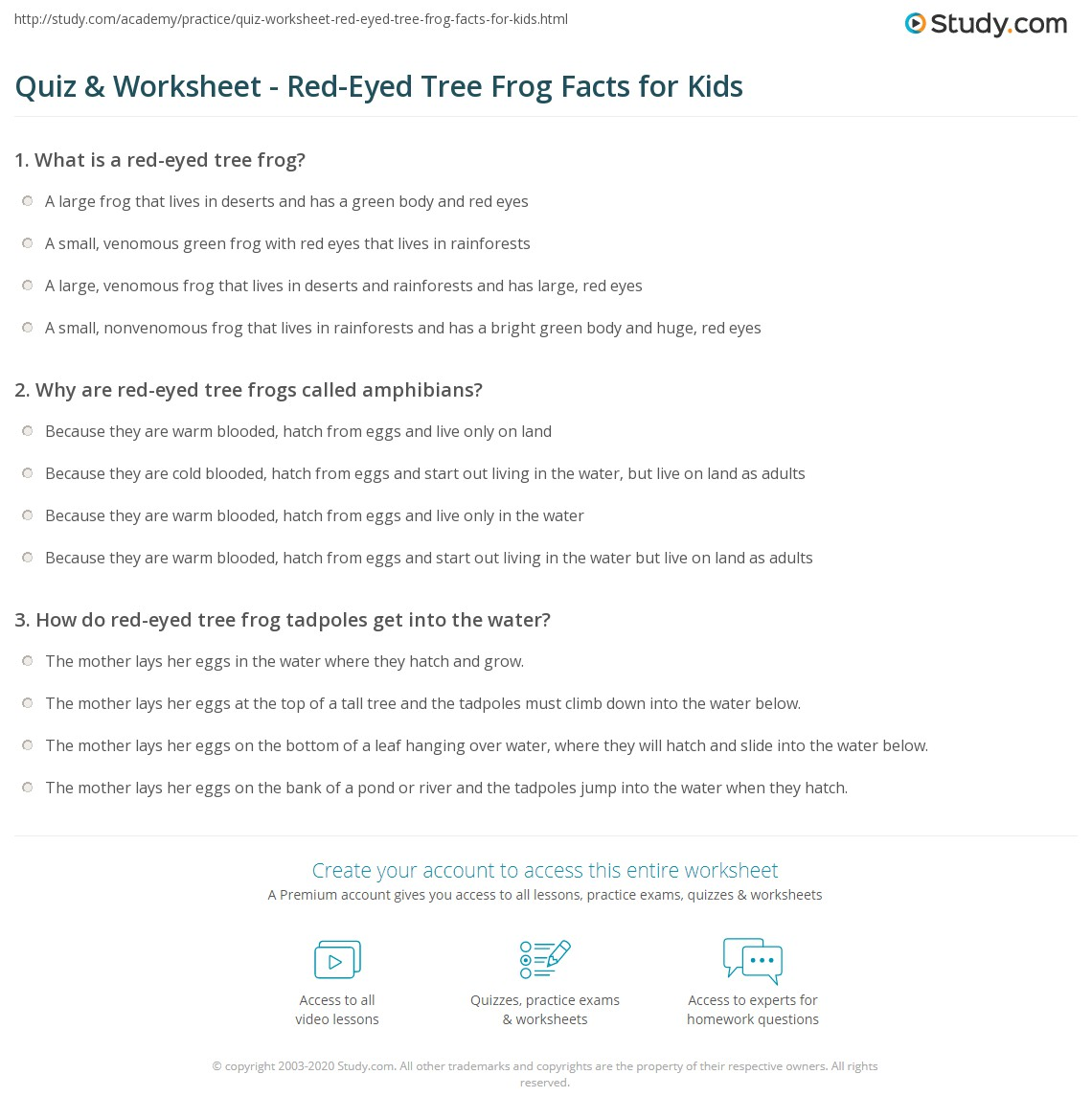 Quiz Worksheet Red Eyed Tree Frog Facts For Kids Study