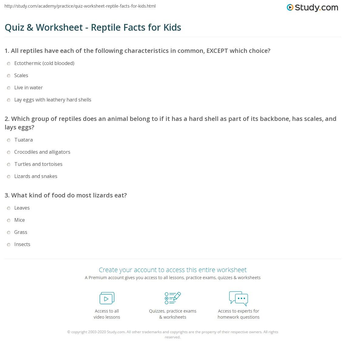 quiz worksheet reptile facts for kids. Black Bedroom Furniture Sets. Home Design Ideas