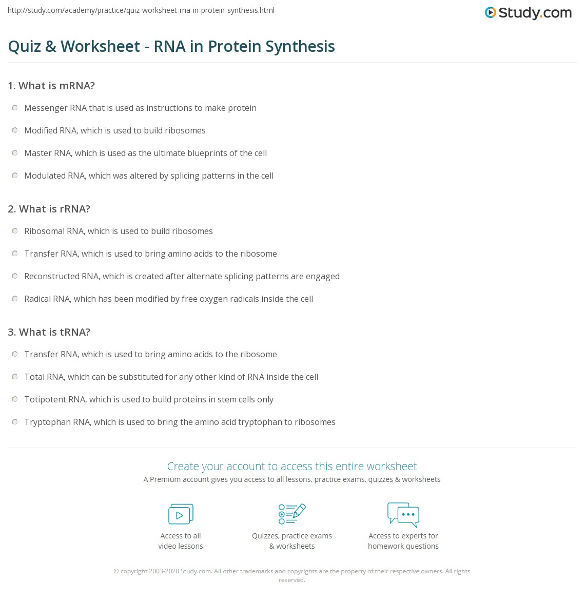 Quiz & Worksheet - RNA in Protein Synthesis | Study.com