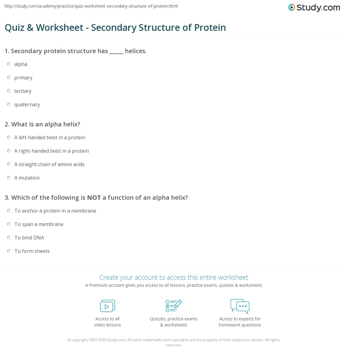 Quiz & Worksheet - Secondary Structure of Protein   Study.com