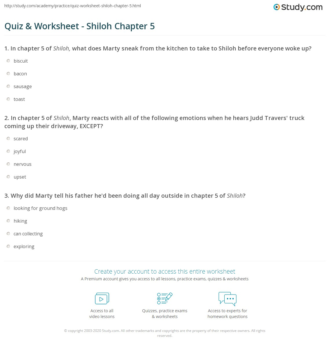Print Shiloh Chapter 5 Summary Worksheet
