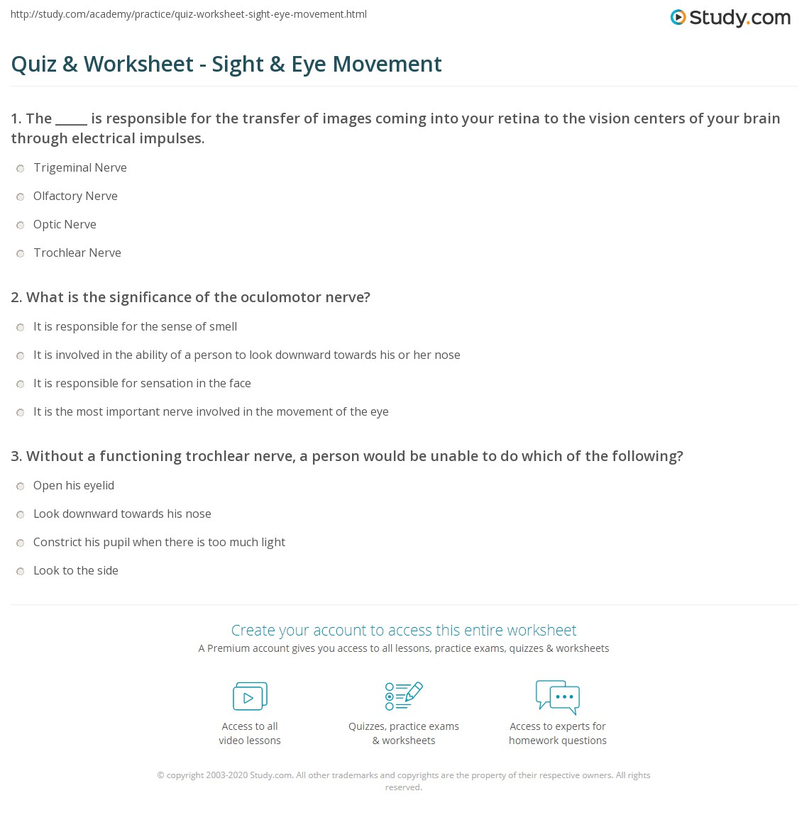 Quiz & Worksheet - Sight & Eye Movement | Study.com