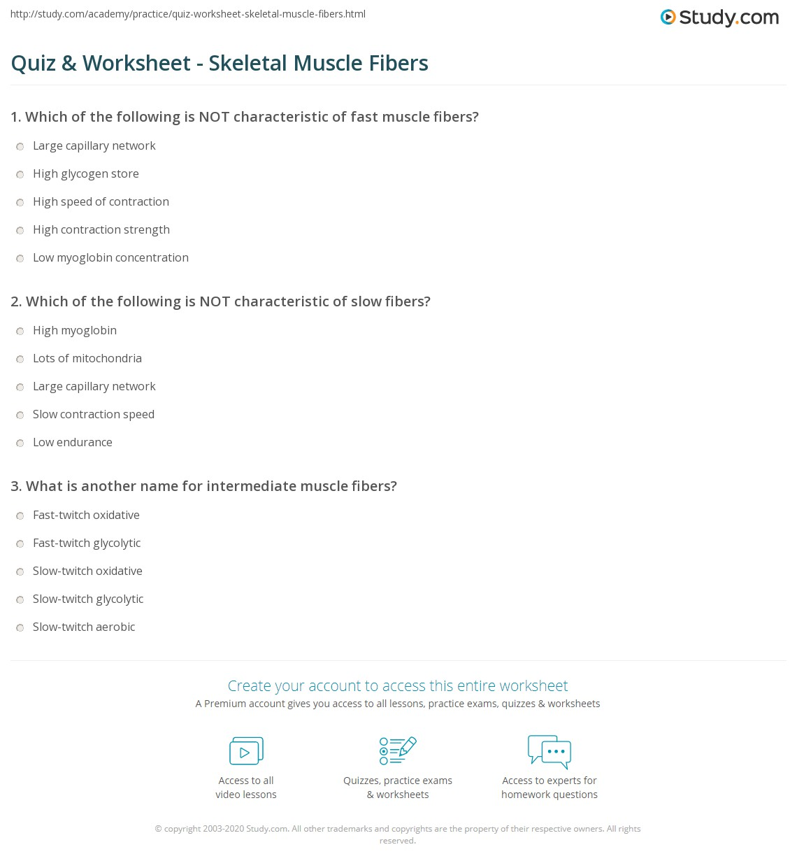 quiz worksheet skeletal muscle fibers. Black Bedroom Furniture Sets. Home Design Ideas