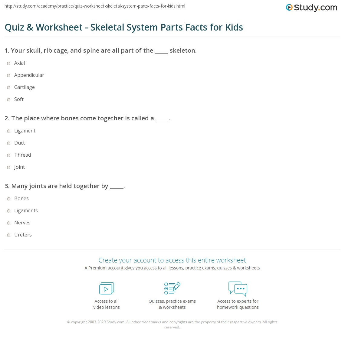 Quiz Worksheet Skeletal System Parts Facts For Kids Study