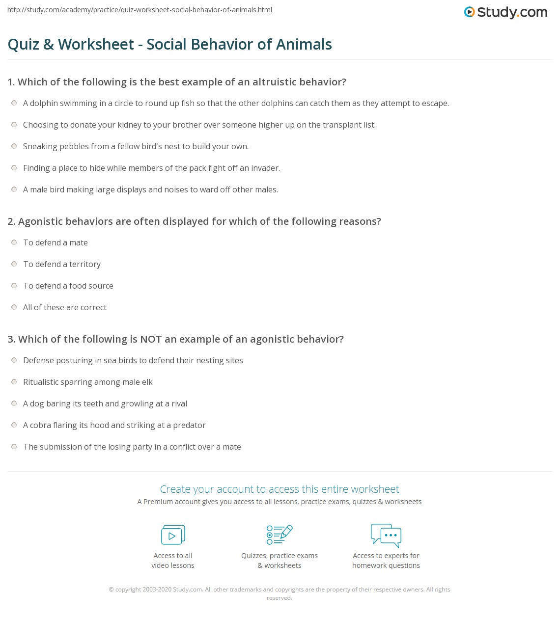 Quiz Worksheet Social Behavior Of Animals Study