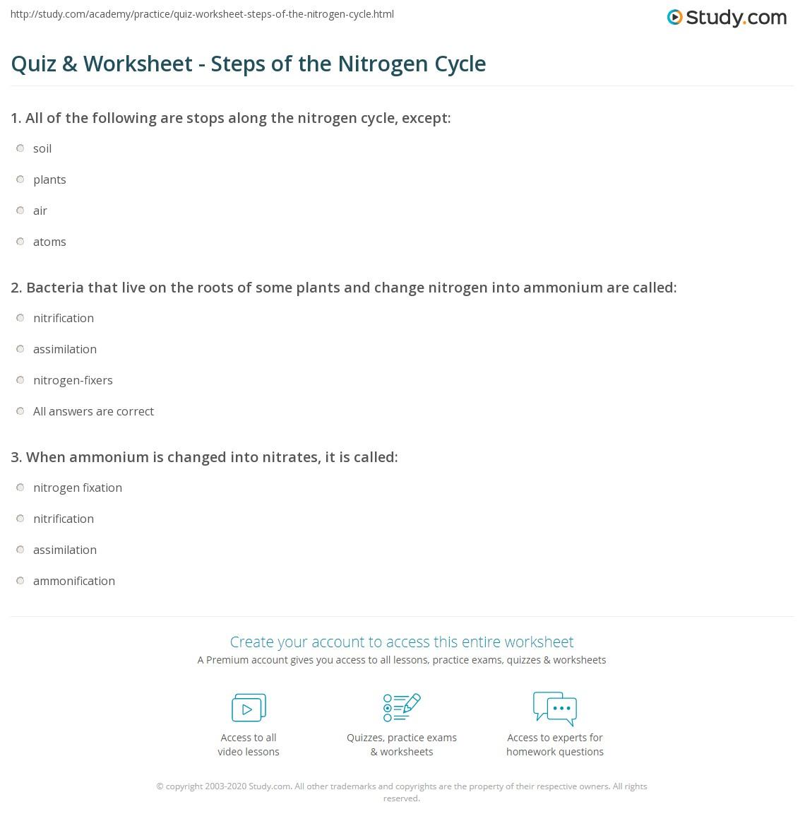Quiz & Worksheet - Steps of the Nitrogen Cycle | Study.com