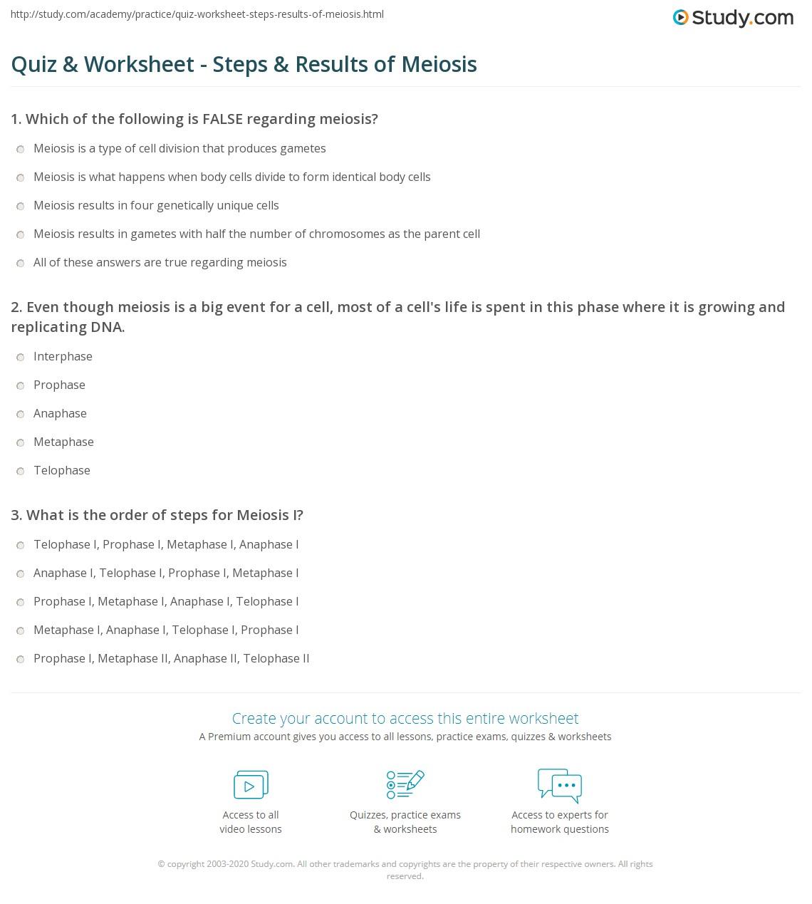 quiz worksheet steps results of meiosis. Black Bedroom Furniture Sets. Home Design Ideas