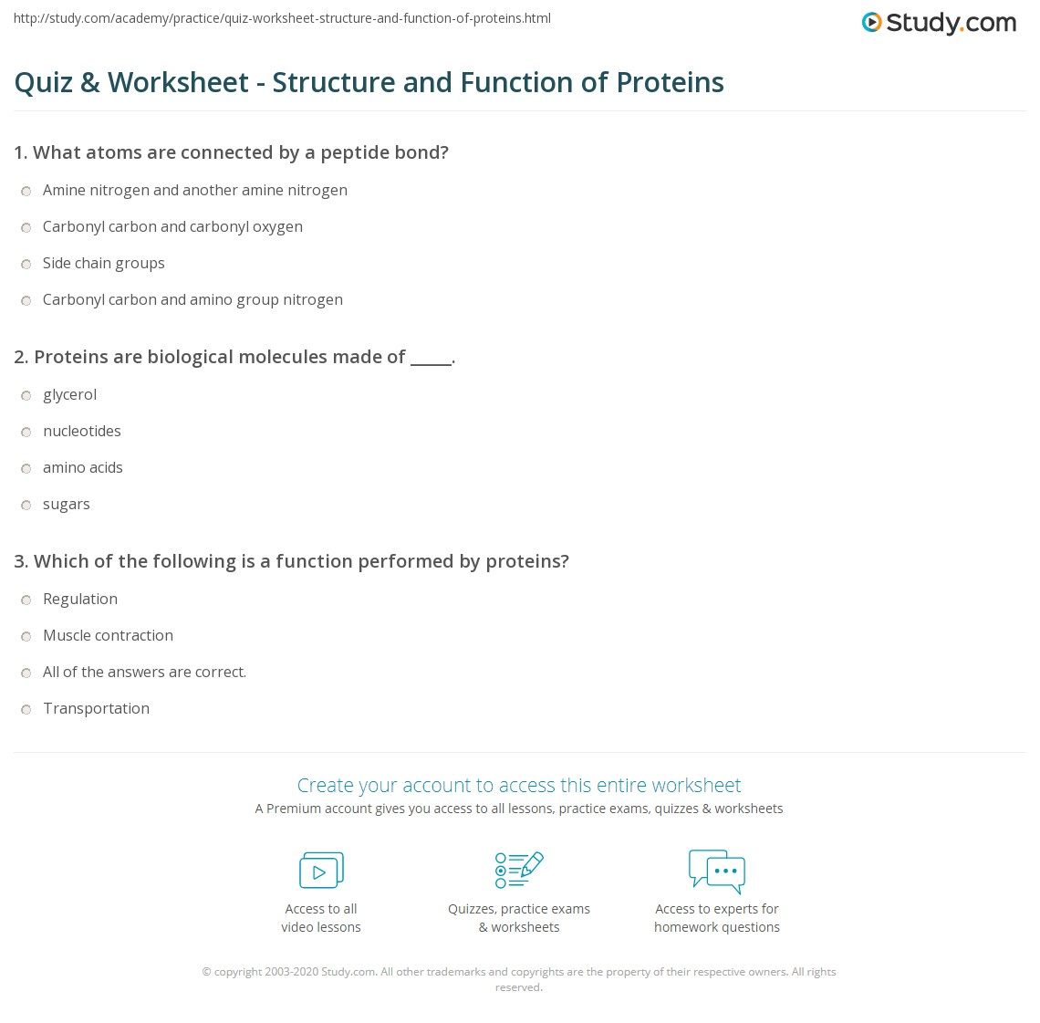 Quiz & Worksheet - Structure and Function of Proteins | Study.com