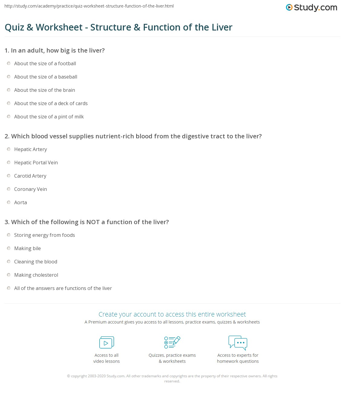 Quiz Worksheet Structure Function Of The Liver Study