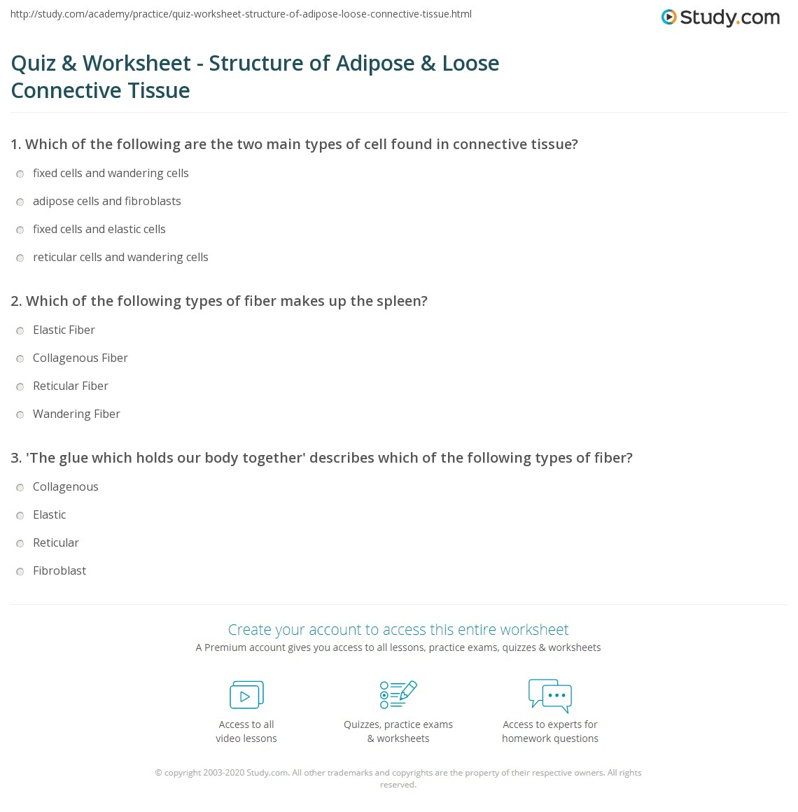 Quiz & Worksheet - Structure of Adipose & Loose Connective Tissue ...