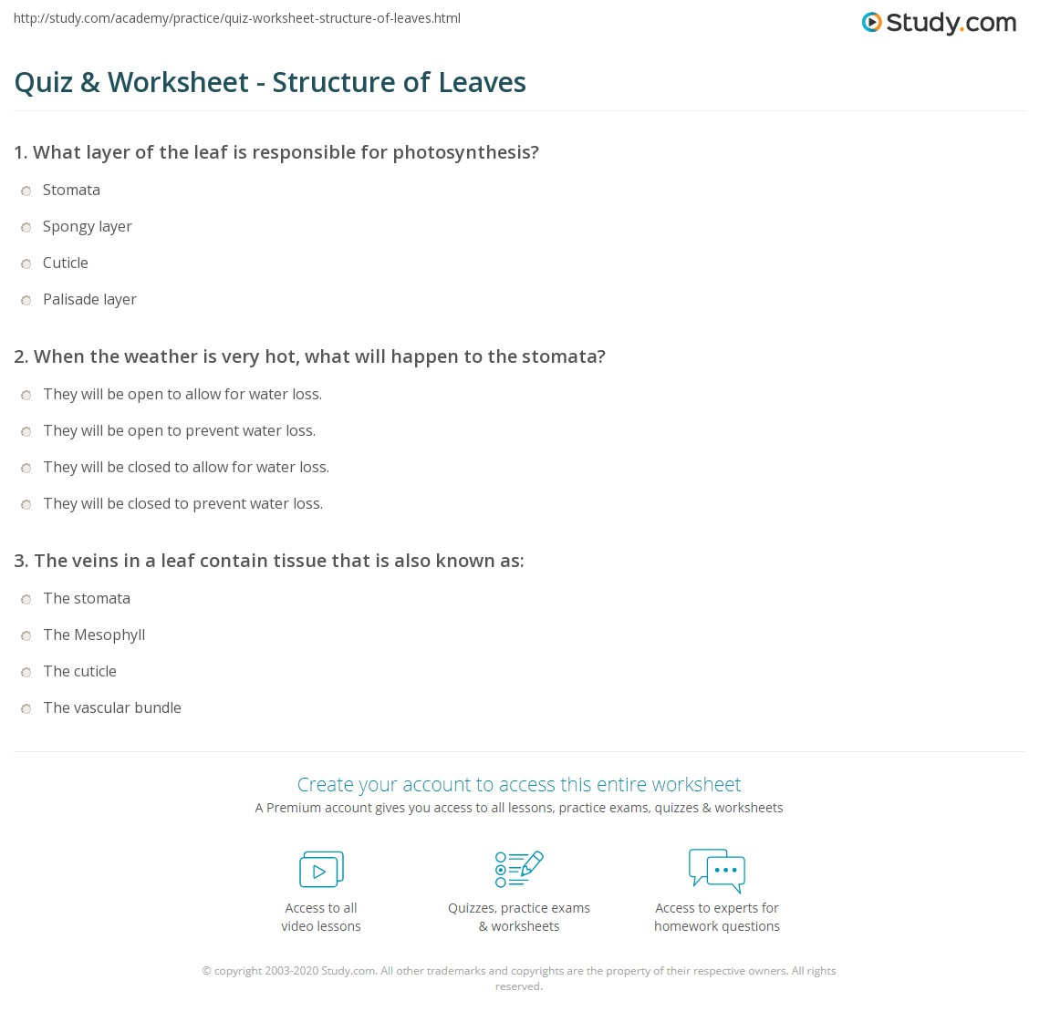Leaf Structure Worksheet Free Worksheets Library | Download and ...