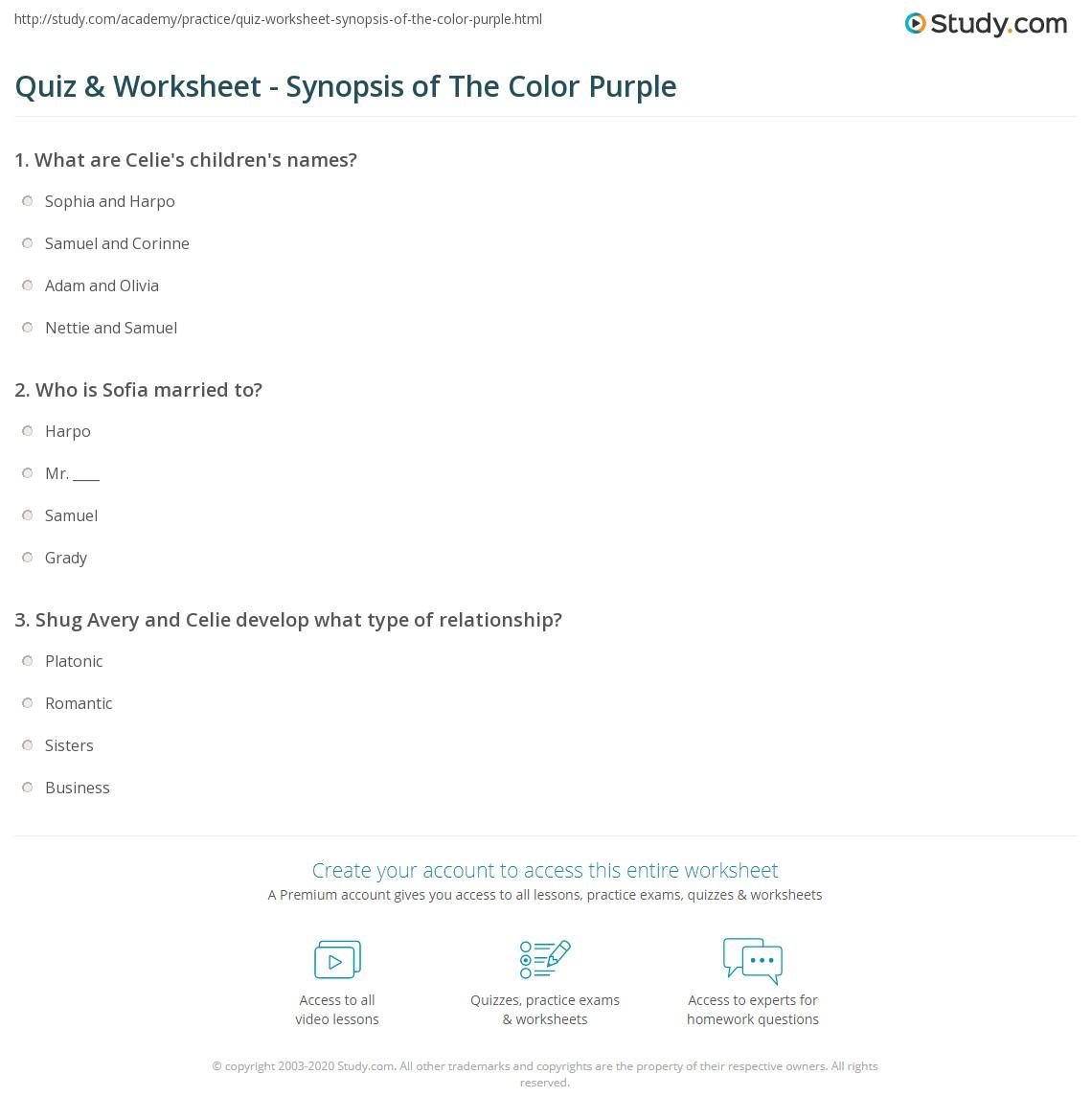The color purple book review essay