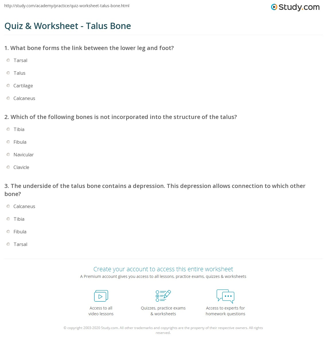 Quiz & Worksheet - Talus Bone | Study.com