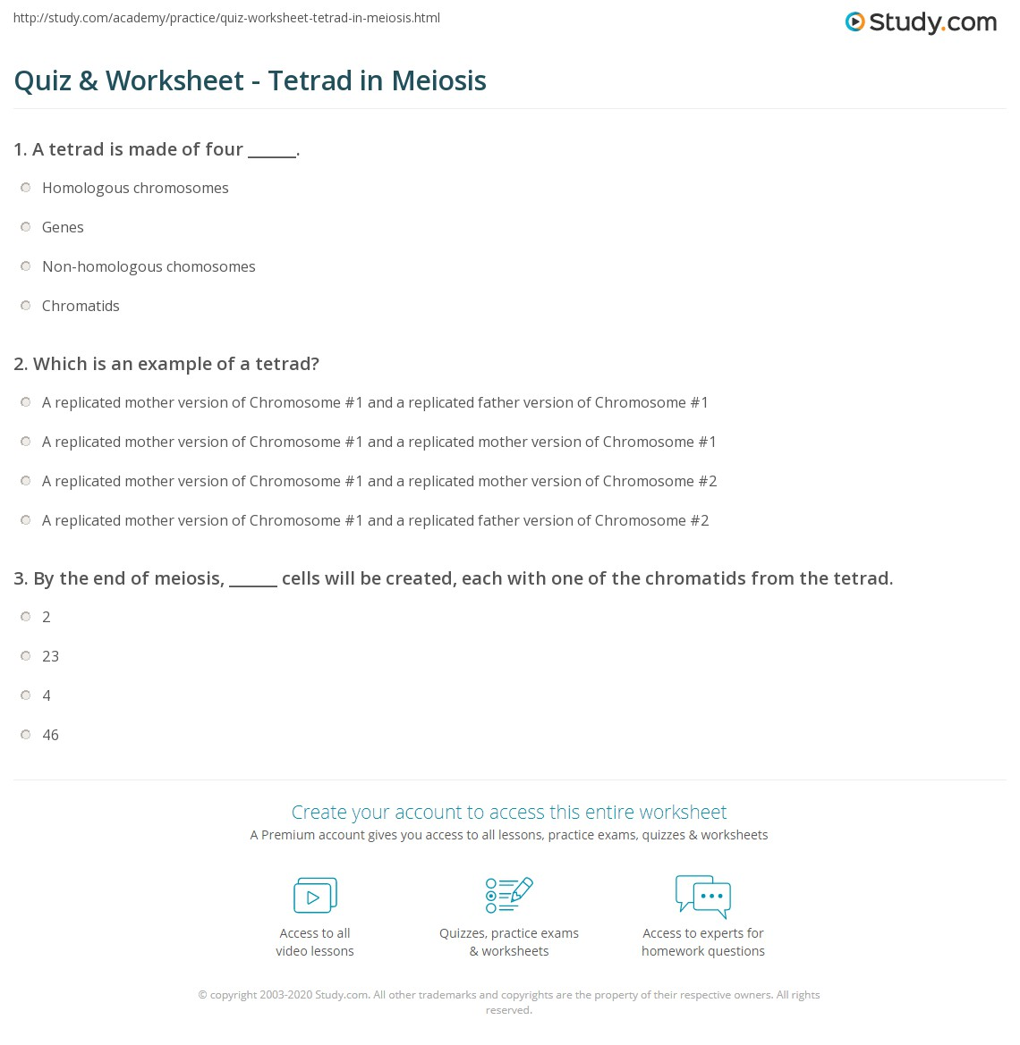 worksheet Snurfle Meiosis Worksheet workbooks meiosis worksheets free printable for pre quiz worksheet tetrad in study com