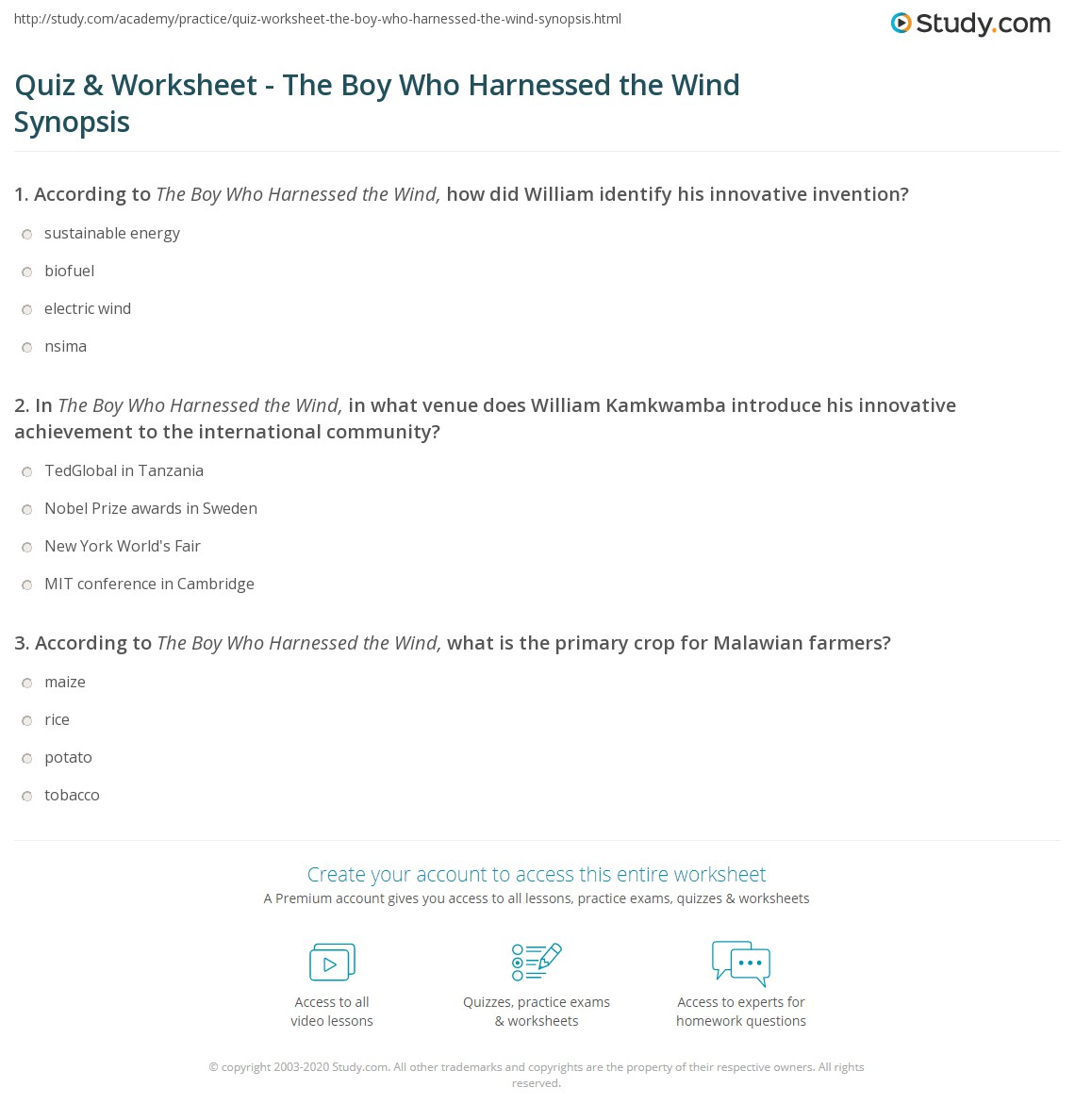 Quiz & Worksheet - The Boy Who Harnessed the Wind Synopsis ...