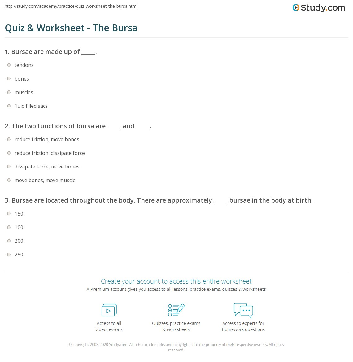Quiz Worksheet The Bursa Study