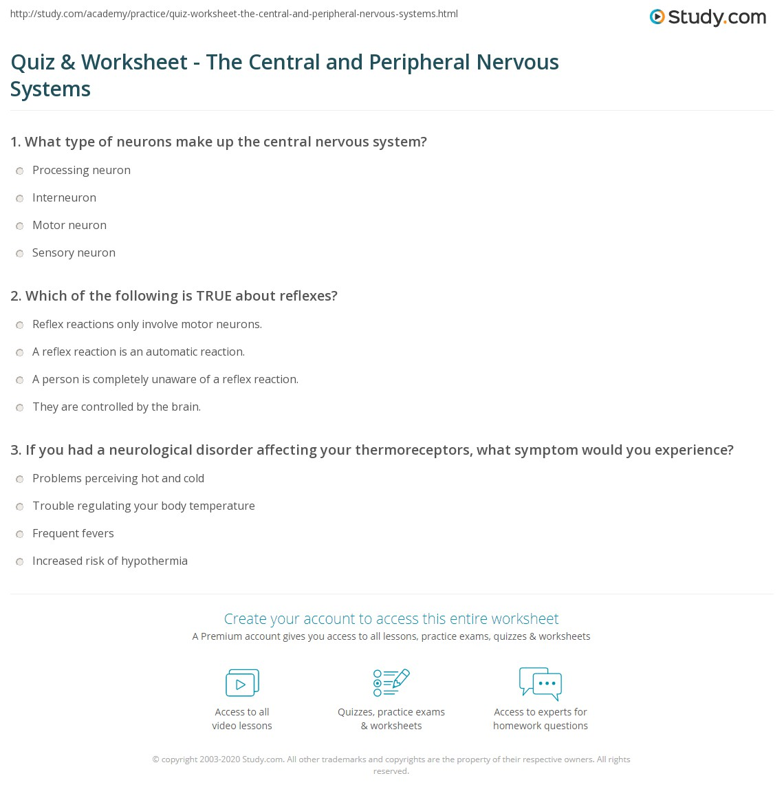 Quiz Worksheet The Central And Peripheral Nervous Systems