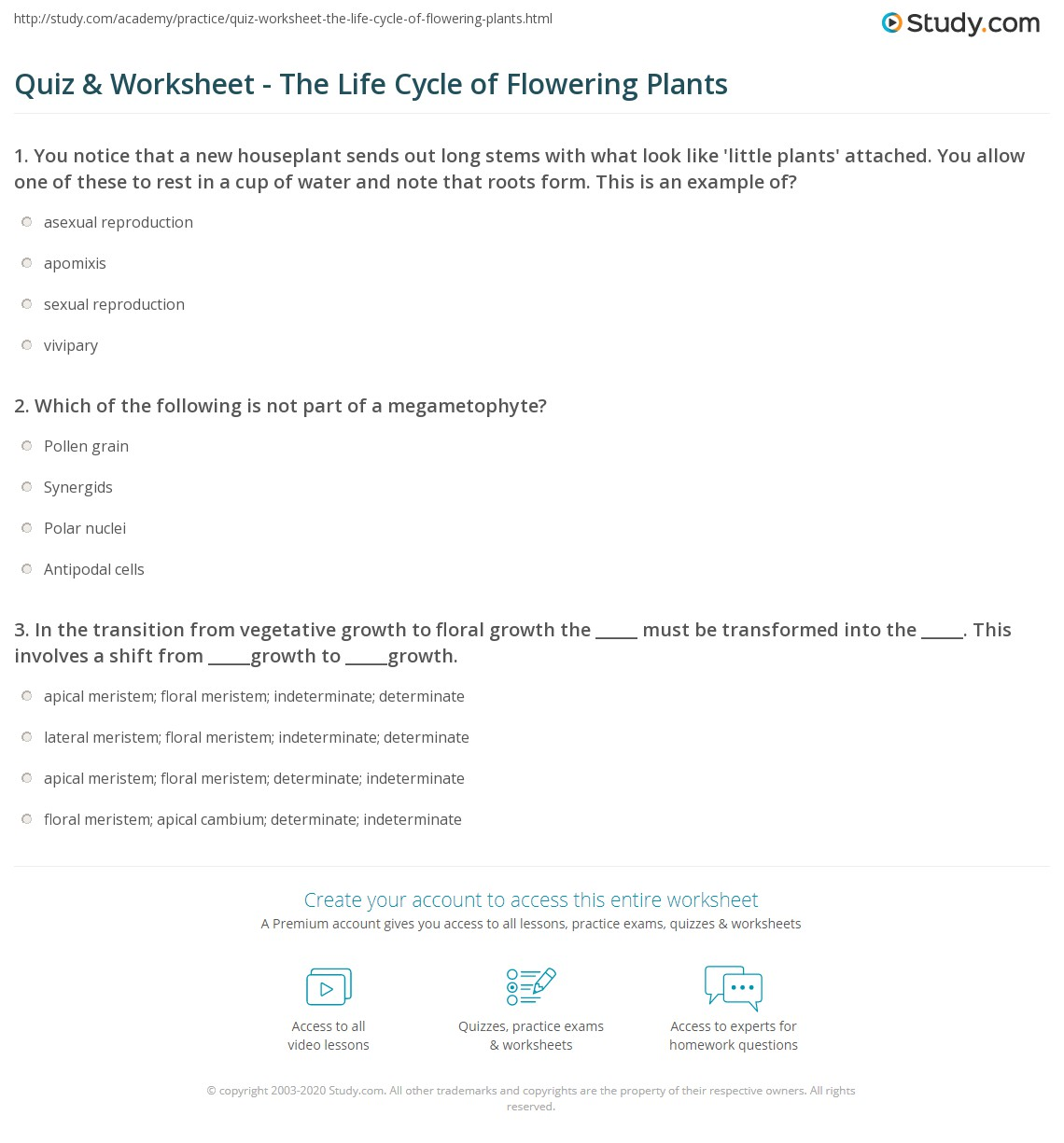 Quiz & Worksheet - The Life Cycle of Flowering Plants | Study.com