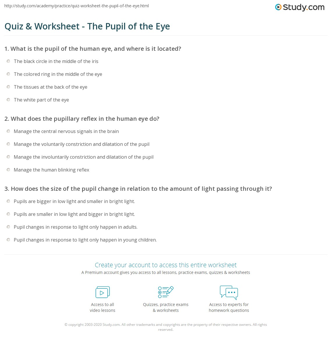 Quiz & Worksheet - The Pupil of the Eye | Study.com