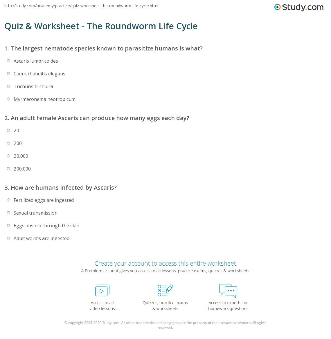 Quiz Worksheet The Roundworm Life Cycle Study
