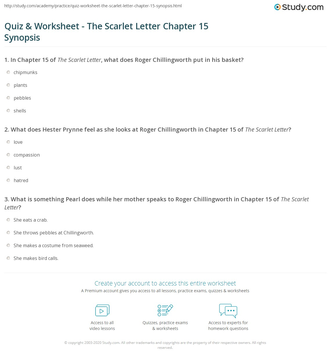 Quiz & Worksheet   The Scarlet Letter Chapter 15 Synopsis | Study.com