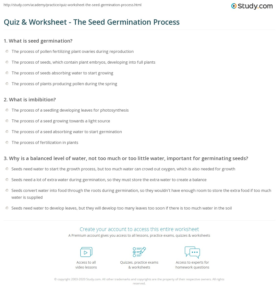 Quiz & Worksheet The Seed Germination Process