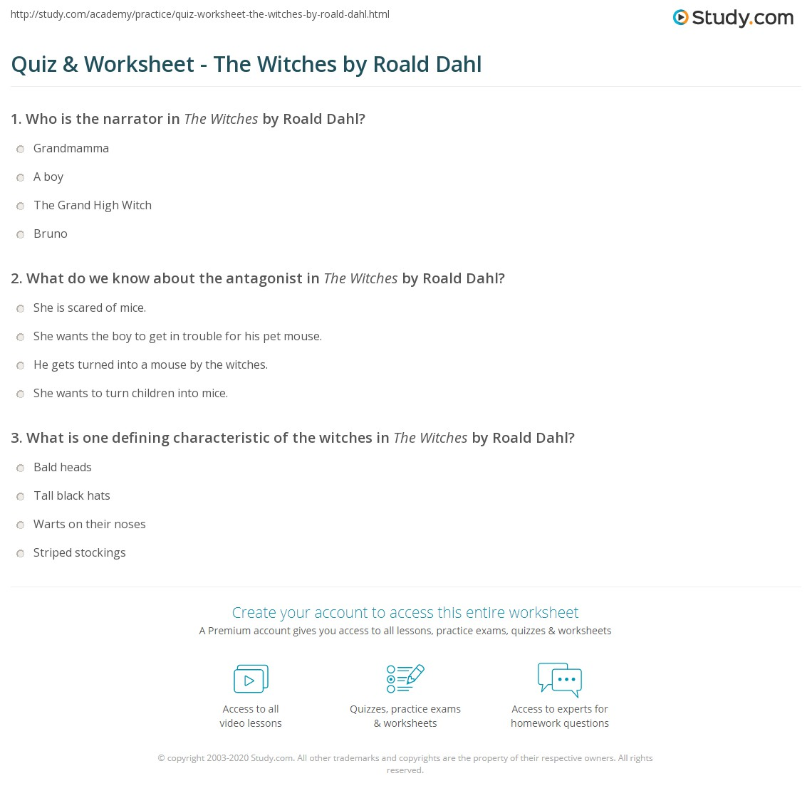 Quiz & Worksheet - The Witches by Roald Dahl | Study.com