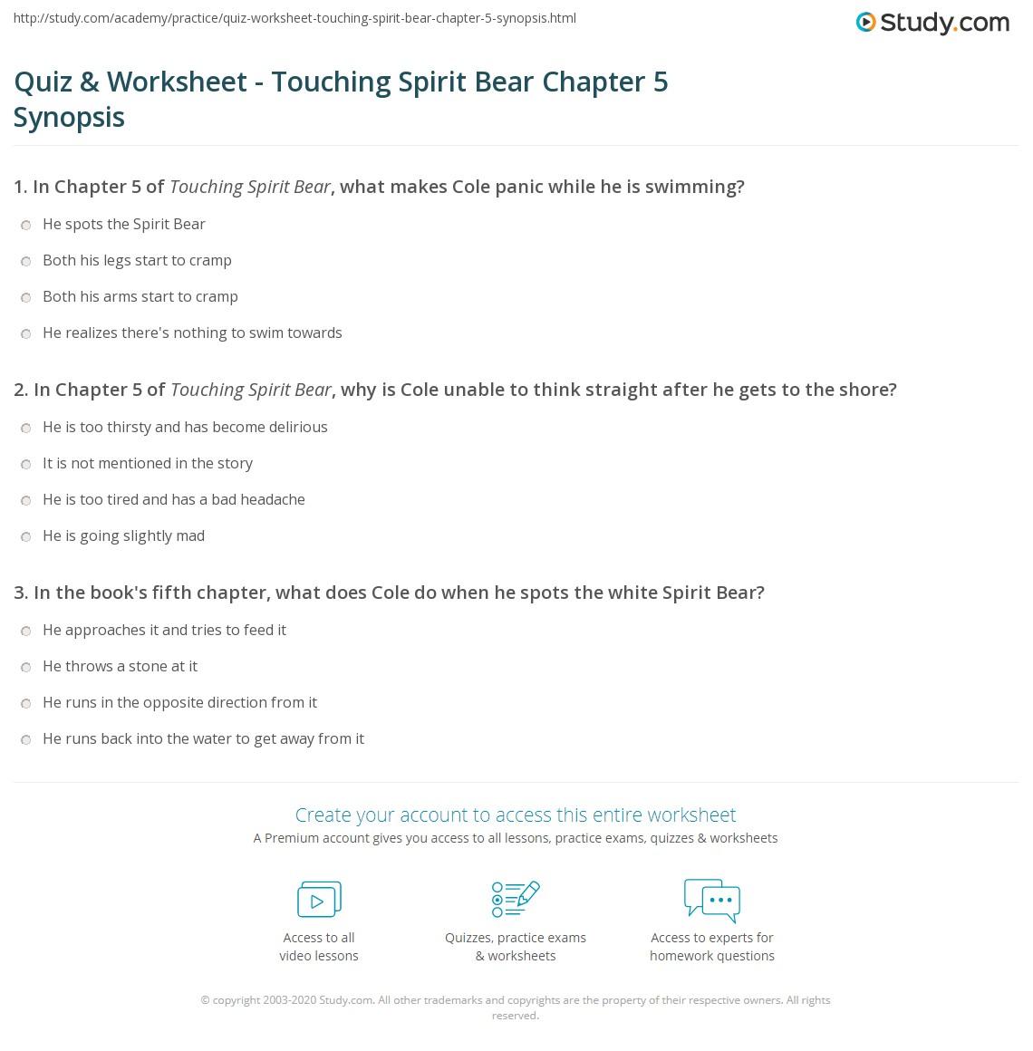 quiz worksheet touching spirit bear chapter synopsis com print touching spirit bear chapter 5 summary worksheet