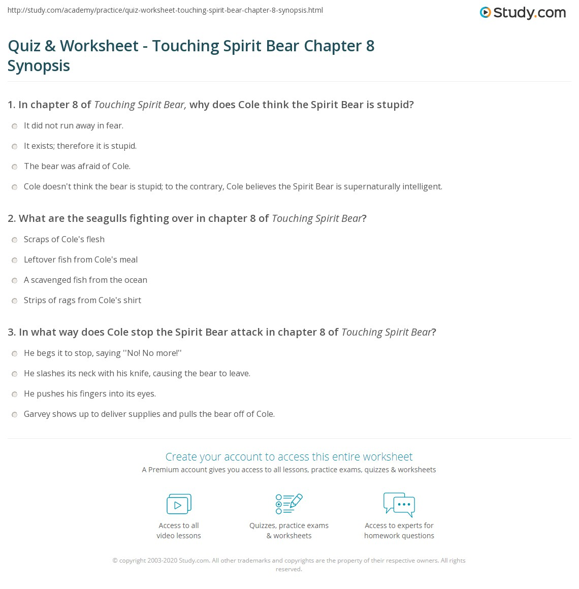quiz worksheet touching spirit bear chapter synopsis com print touching spirit bear chapter 8 summary worksheet