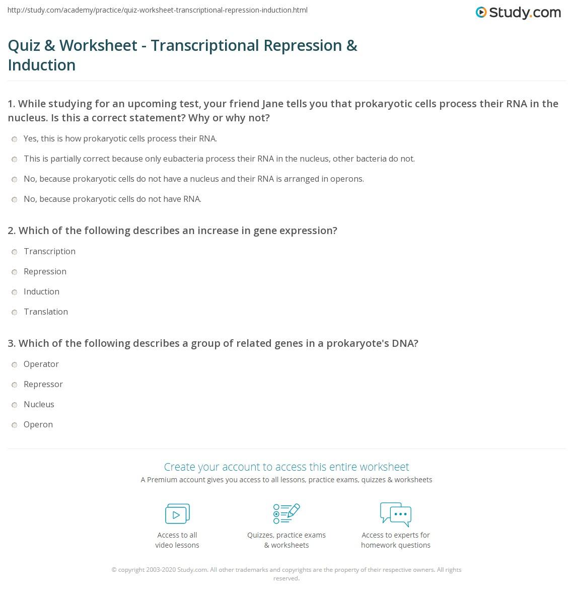 quiz worksheet transcriptional repression induction. Black Bedroom Furniture Sets. Home Design Ideas