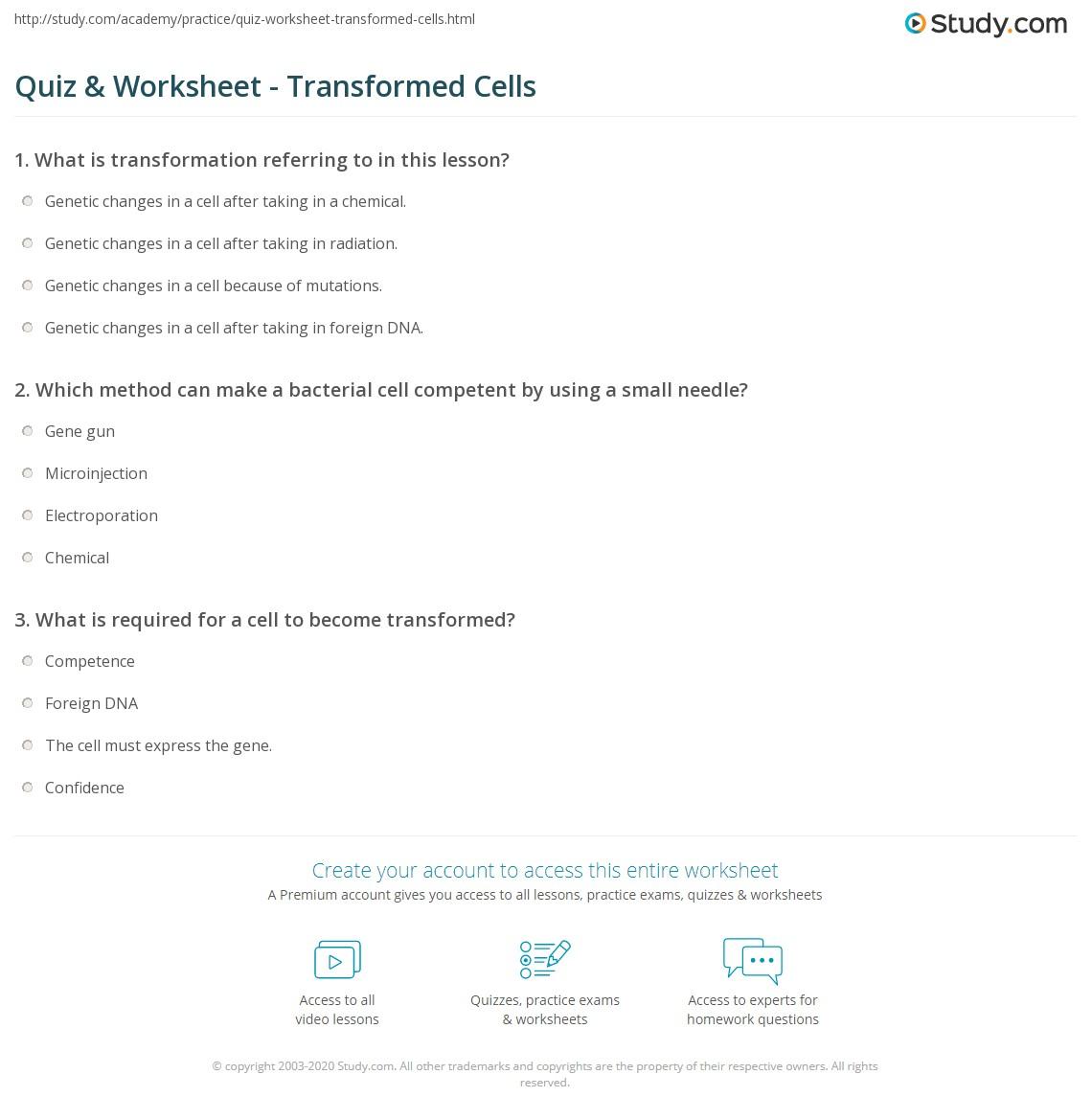 quiz & worksheet - transformed cells | study