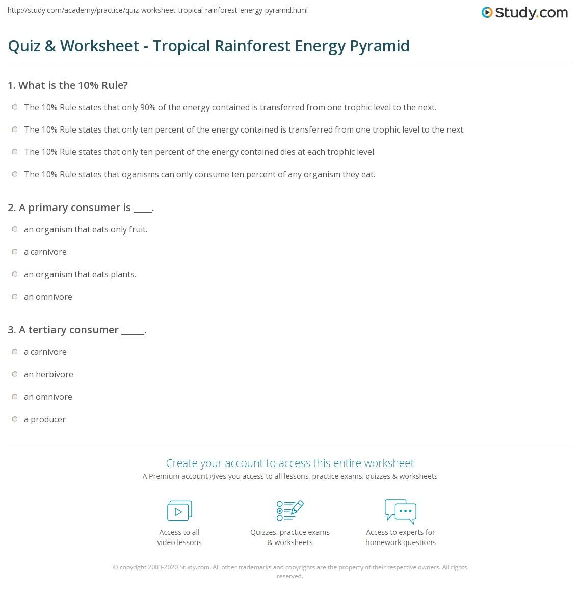 Quiz Worksheet Tropical Rainforest Energy Pyramid – Ecological Pyramid Worksheet