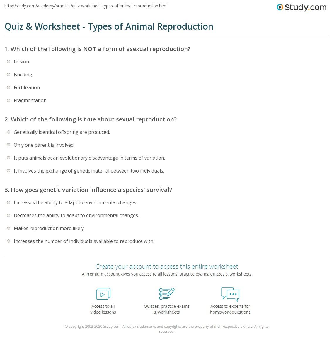 quiz worksheet types of animal reproduction. Black Bedroom Furniture Sets. Home Design Ideas
