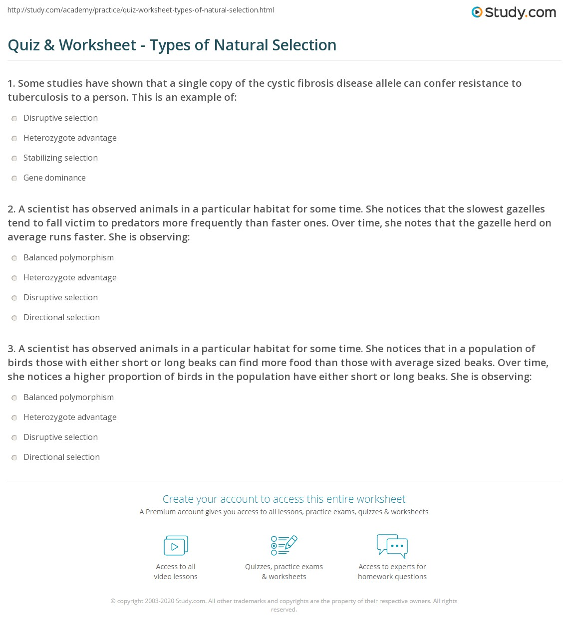 Quiz Worksheet Types Of Natural Selection Study